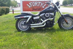 2008 FXDF - Stock 96ci